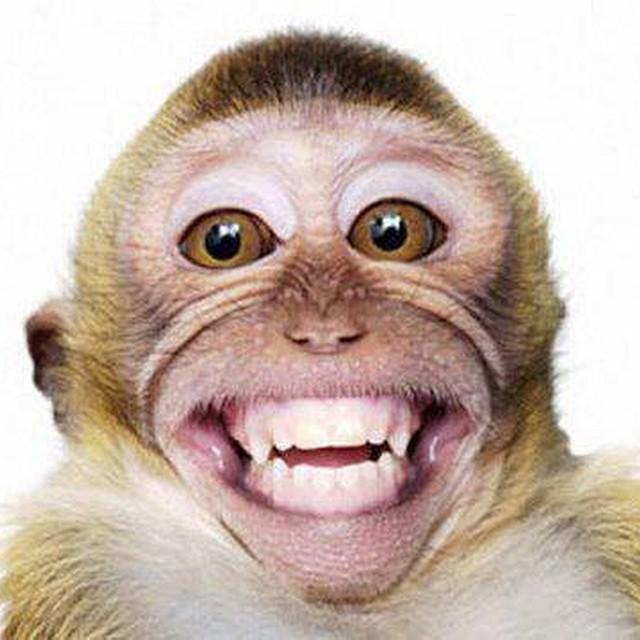 Senyum Itu Sedekah...:) - Lessons - Tes Teach