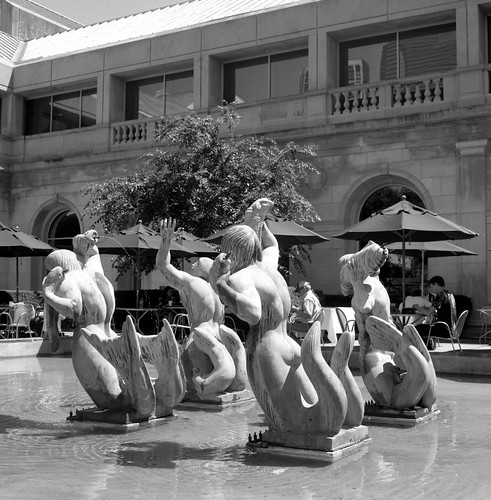 "Image titled ""Courtyard, Art Institute, Chicago."""
