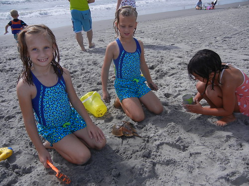 Sept 1 2014 Beach Day N Wildwood, NJ (3)