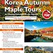 Korea Autumn Maple Tour