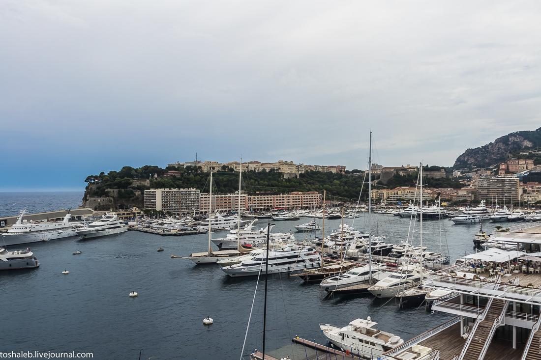 Монте Карло-24