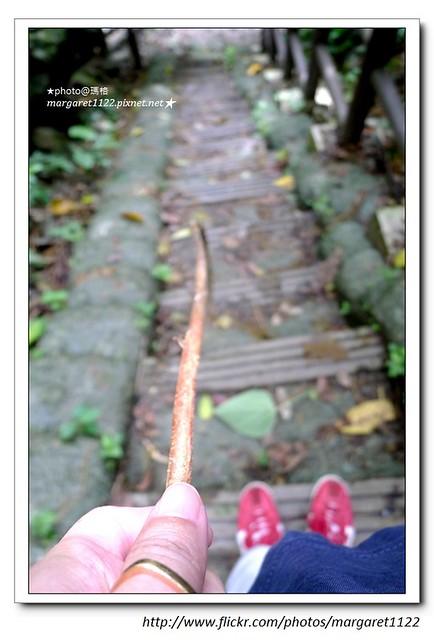 【花蓮】撒固兒步道