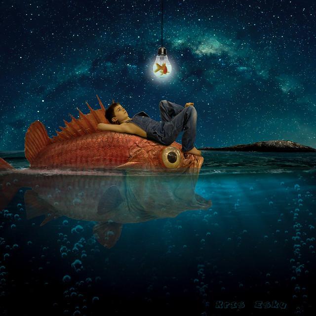 Calm water fish