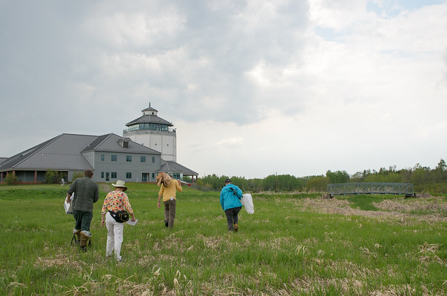 Bug Sampling at Great Lakes Visitor center