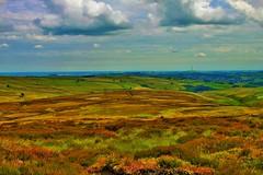 Scenic Yorkshire