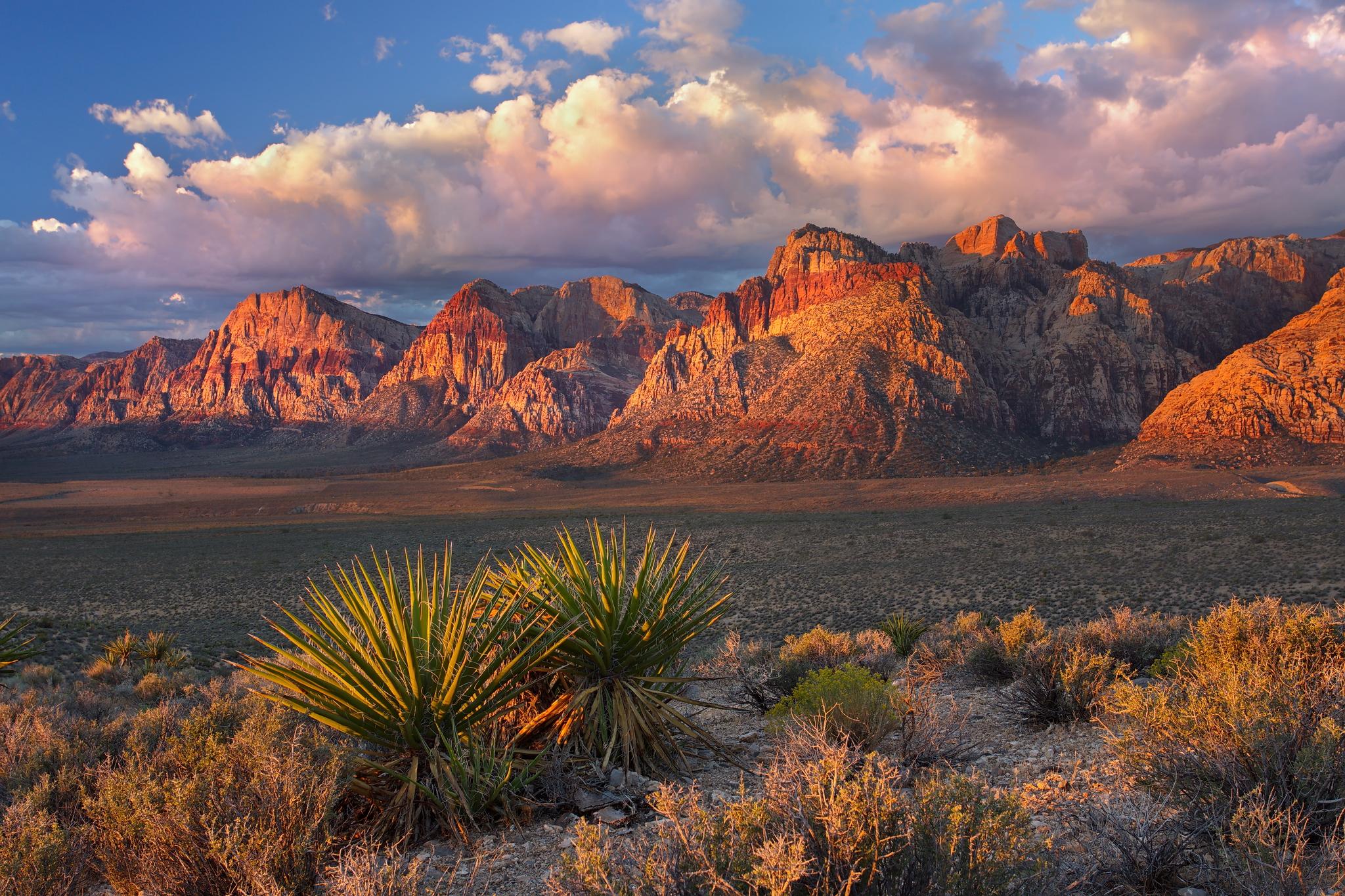 Sunset Cliffs Natural Park Rock