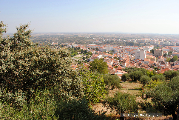 17 - Castelo Branco Portugal - Каштелу Бранку Португалия