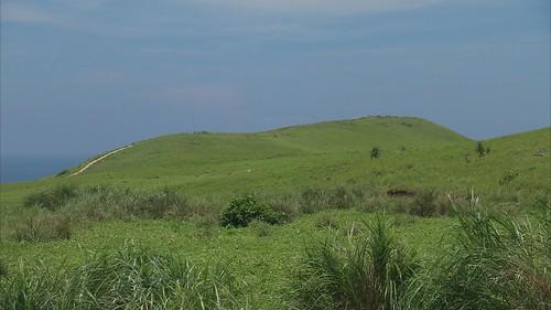 青青草原、永興農場等地區都被劃為國有土地