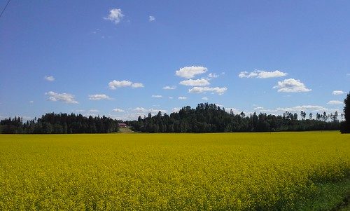 view hill medieval ironage hillfort sacredplacesoffinland