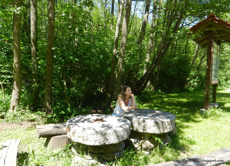Леса Словении