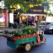 Beijing Cargo eBike, loaded with plants
