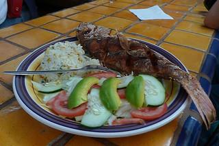Tequila - Mercado de Comidas Pescado Frito