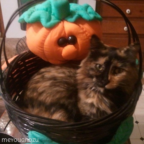 Topaz Halloween