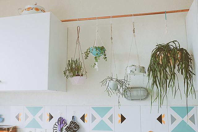 haste de cobre e plantas penduradas