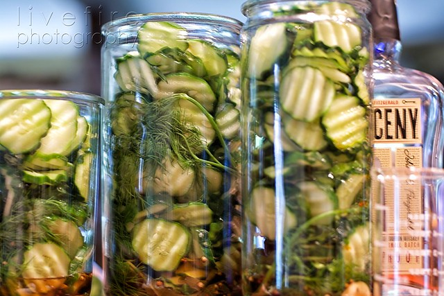 Cukes packed for pickles