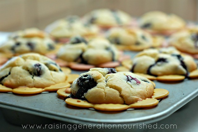 Blueberry Muffins :: Gluten Free, Nut Free, Egg/Dairy Free Options
