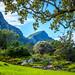 Kirstenbosch Gardens [Explored]
