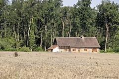 Montcoy - Ferme Bressanne