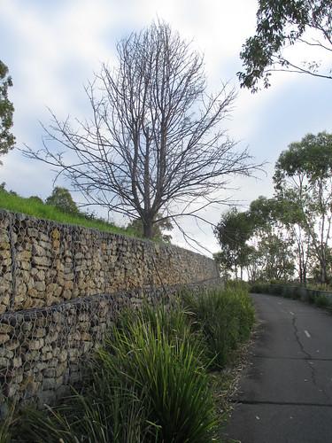 Sydney Olympic Park 5