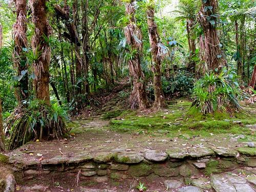 history archaeology thelostcity ciudadperdida
