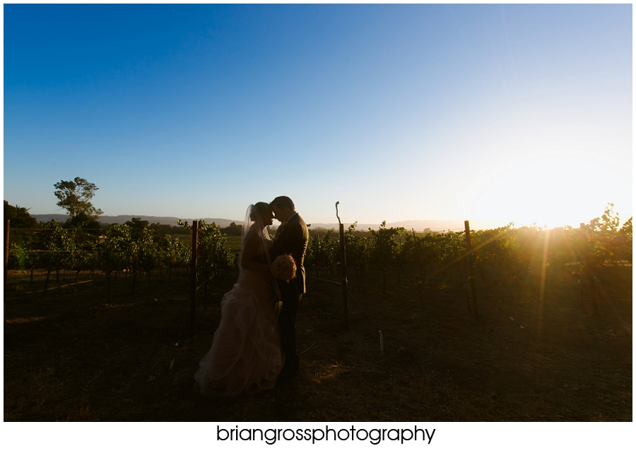 Brandi_Will_Preview_BrianGrossPhotography-218