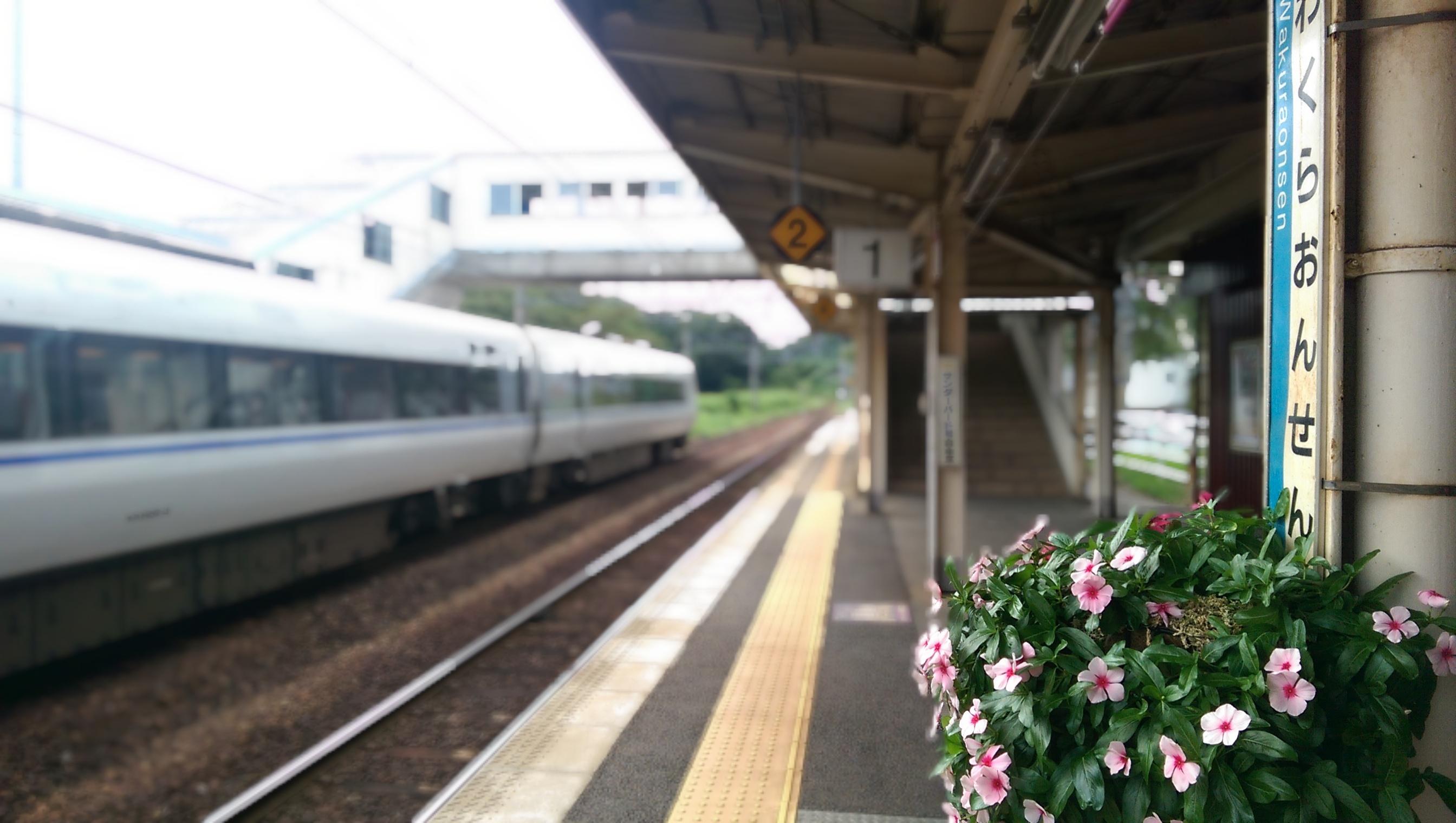 Wakura-onsen Station