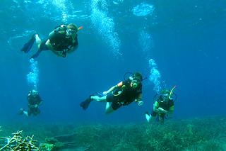 "<img src=""refresh-dive-tioman.jpg"" alt=""Refresh Dive, Tioman"" />"