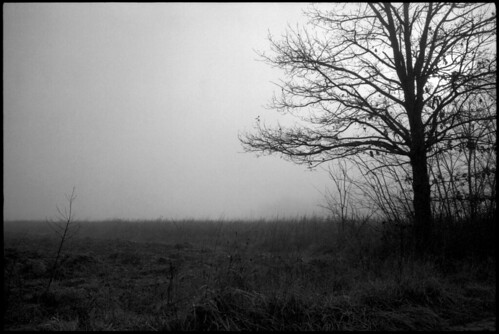 morning trees winter reflection tree film nature fog canon landscape blackwhite pentax takumar kodak 28mm foggy croatia m42 spotmatic t400cn manualfocus canoscan spf twop asahipentax screwmount 125asa c41 chromogenic colornegative 2013 vuescan 8800f pullprocess canoscan8800f camera:brand=pentax lens:mount=m42 camera:type=slr film:brand=kodak justpentax film:format=135 kodakprofessionalt400cn location:country=croatia pentaxart spotmaticspf supermulticoatedtakumar13528 film:process=c41 lens:focallength=28mm film:speed=400 lens:brand=asahipentax winter2013 desinec honeywellpentaxspotmaticspf camera:brand=asahipentax camera:mount=m42 lens:maxaperture=35 camera:model=spotmaticspf lens:model=supermulticoatedtakumar3528 film:model=t400cn lens:brand=pentax camera:brand=honeywellpentax camera:format=135 lens:format=135 film:ei=125