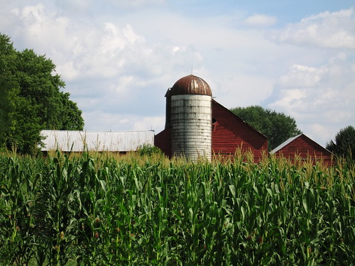 red newyork color green clouds barn rural landscape cornfield farm silo agriculture scotia redbarn s70 capitaldistrict canonites