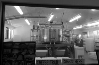 Nicasio Valley Cheese Company - Steel Vats