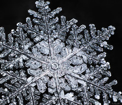 Snowflake: Glowing Ice