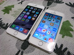 iPhone 6 & iPhone 5s