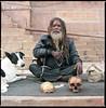 Dog's life in Varanasi.