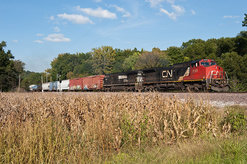 railroad up cn train ns unionpacific ge canadiannational norfolksouthern c408w mixedfreight cn2151 ns8315 grimsbyillinois grimsbyil mixedmanifest upmpipb