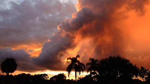 pink blue sunset red wallpaper sky orange storm color tree weather silhouette yellow night clouds landscape evening nikon flickr florida dusk palm september coolpix bradenton p510 mullhaupt cloudsstormssunsetssunrises jimmullhaupt