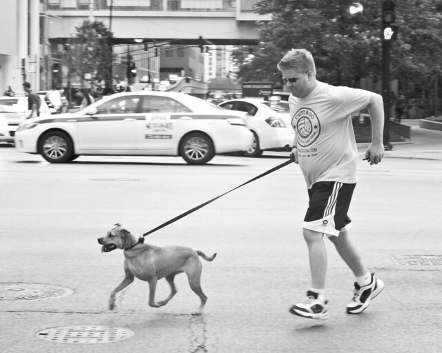 321/365 - Jogging The Dog