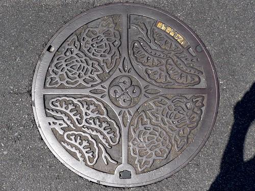 Shimane, manhole cover (島根県のマンホール)