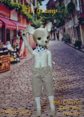 http://dollspartybcn.blogspot.com.es/2014/07/tramp.html
