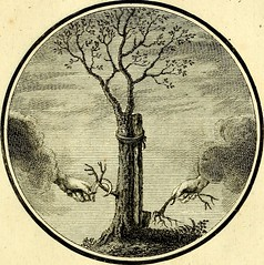 "Image from page 64 of ""Regvla emblematica sancti Benedicti"" (1780)"