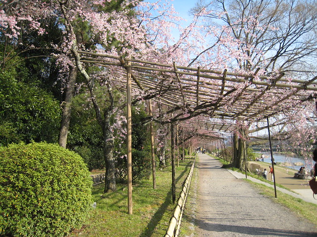 Nakaragi no Michi, Kyoto