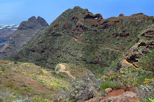 The path, Anaga, Tenerife