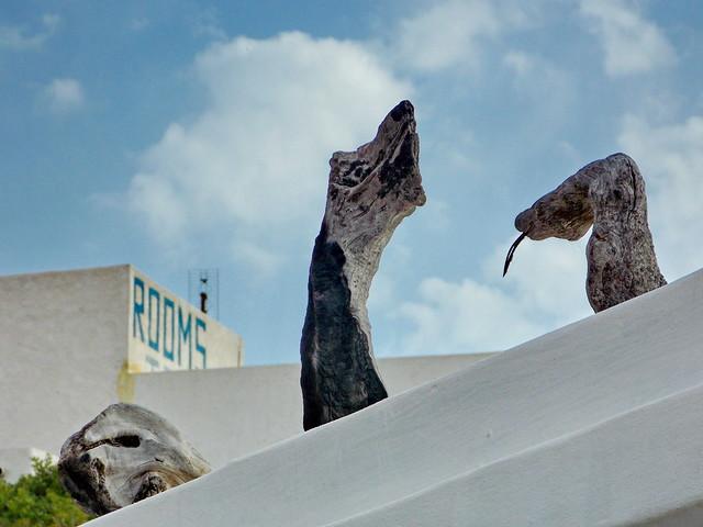 Φιδια στην οροφη-Snakes on the roof