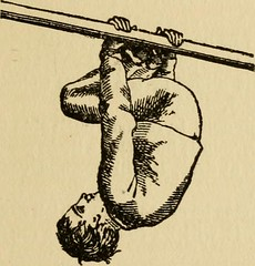 "Image from page 15 of ""Gymnastics and rope climbing"" (1916)"