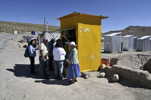 peru southamerica josephine per altiplano 2011 südamerika