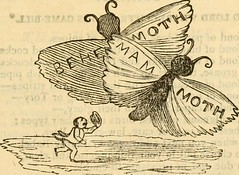 "Image from page 644 of ""The choice works of Thomas Hood, in prose and verse"" (1881)"