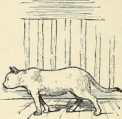 "Image from page 365 of ""St. Nicholas [serial]"" (1873)"