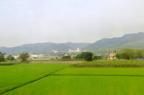 ChanghuSmall Rail-Retour (15)