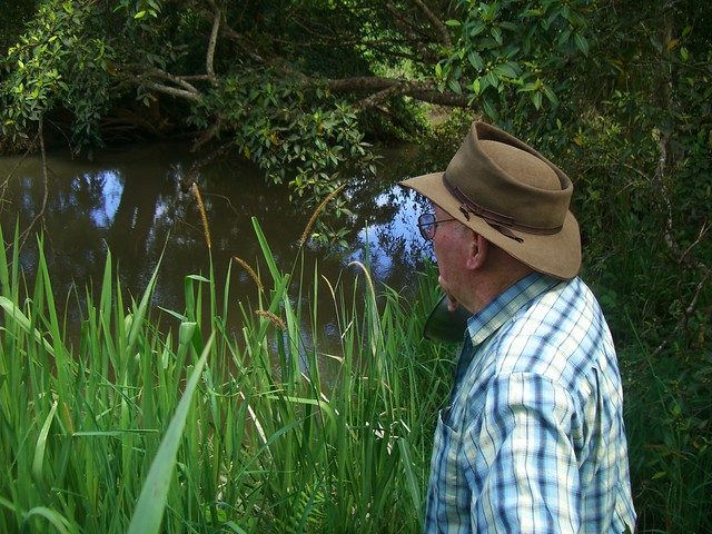 Dad_looking_over_Barron_River_onOldFamilyProperty