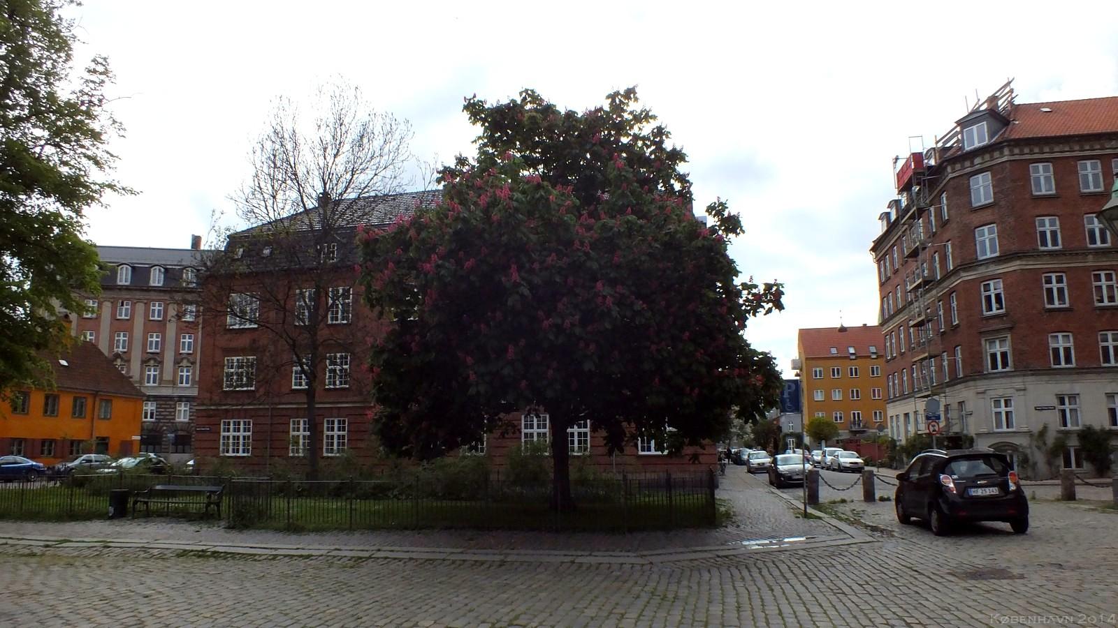 Rævegade, København, Denmark