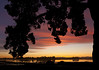 Sunset Silhouette SS2011 revamp-6367